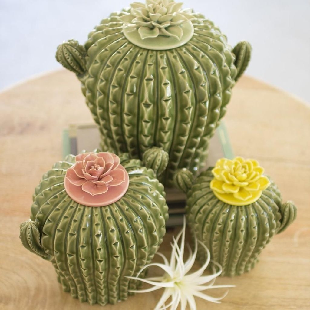 Cool Small Cactus Ideas For Interior Home Design30