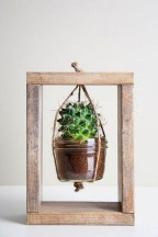 Cool Small Cactus Ideas For Interior Home Design35