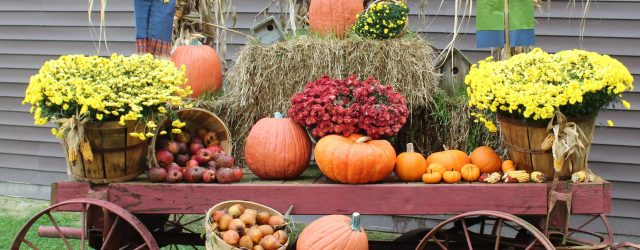 The Best Fall Wagon Decorating Ideas