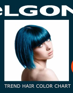 Elgon professional hair color chart instructions ingredients also rh trendhaircolor