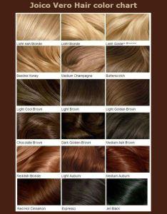 Joico hair color charts also mersnoforum rh