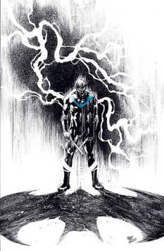 Nightwing #14 Ivan Reis & Oclair Albert