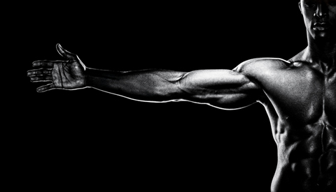 Top 7 Arm Exercises