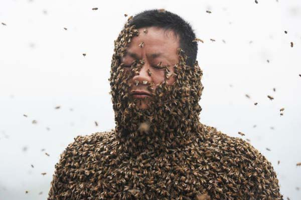 Beard from Bees