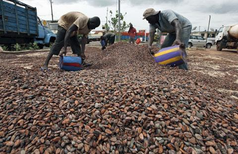 Country that produces the most cocoa beans