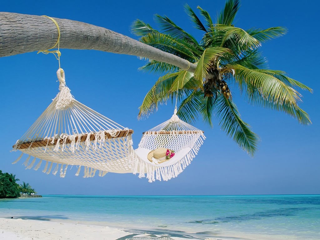 Imagine a beach where there is peace all over and where you can rest under a shade of tree with your partner.