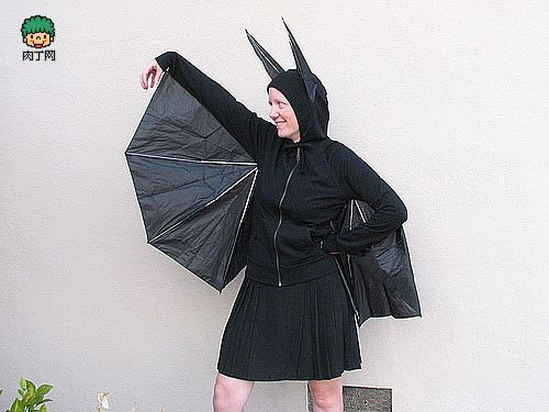 Umbrella Bat