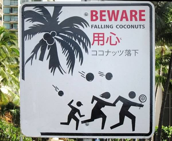 Columbian Man Killed by a Falling Coconut