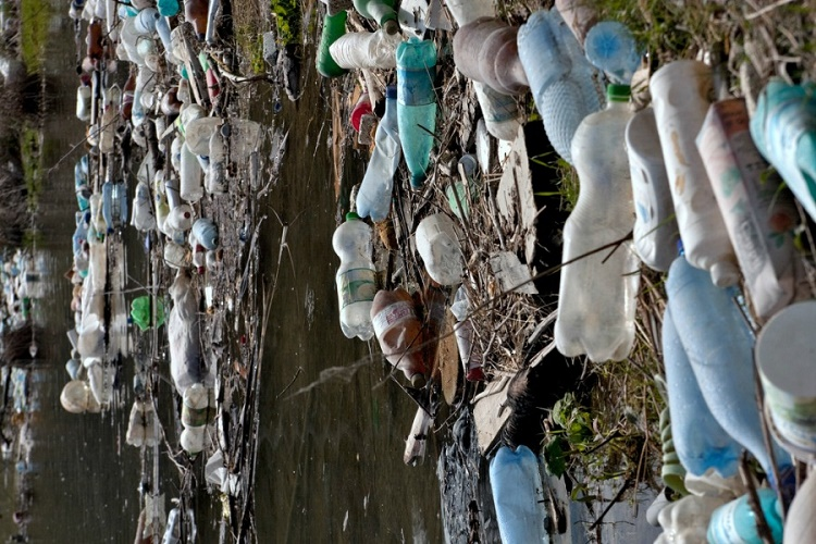 Advanced Discovery of a Special Microbe To Cut Down on Plastic Waste