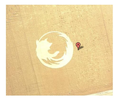 Firefox in the middle of a field