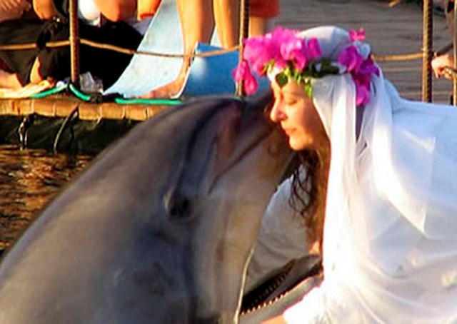 Girl marries a dolphin