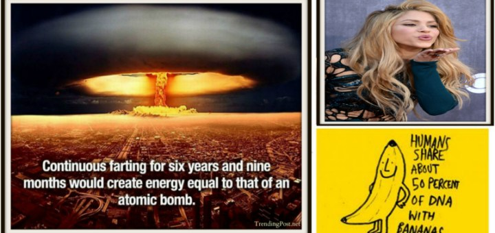 10 Mind blowing facts you must know