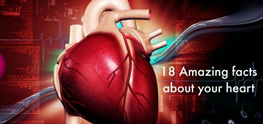 18 Amazing facts about heart