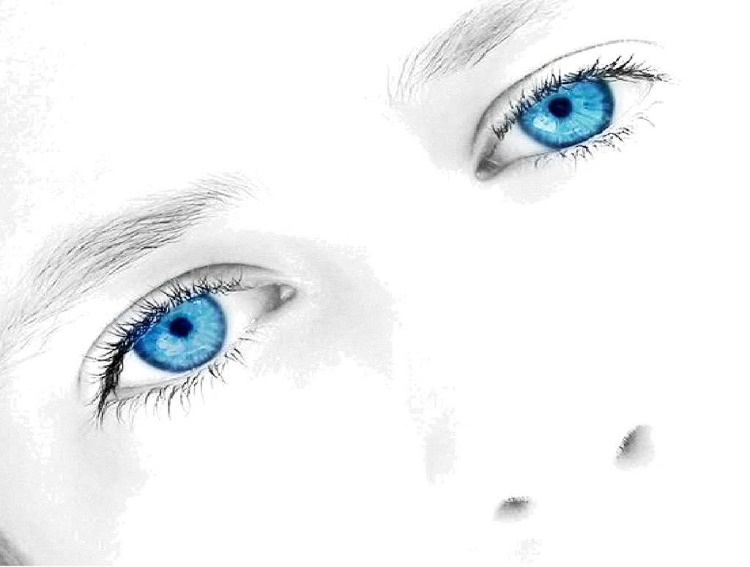 Blue-eyed people have a common ancestor