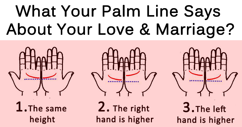 palmistry diagram marriage line electrical stop start station wiring want to know when you will fall in love and get married see how locate the on your palm