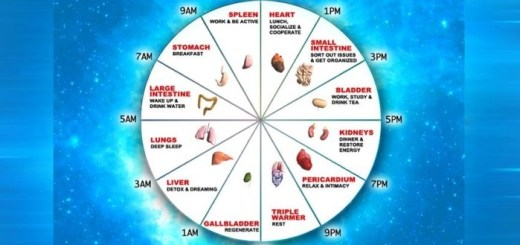 Learn what time is best to do what according to the Human Body Energy Clock