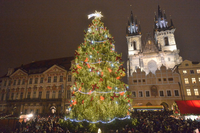 Christmas Tree in Prague, Czech Republic