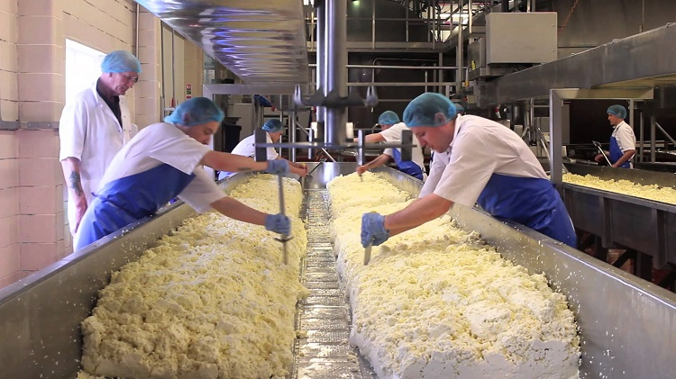 France is losing their traditional cheese makers