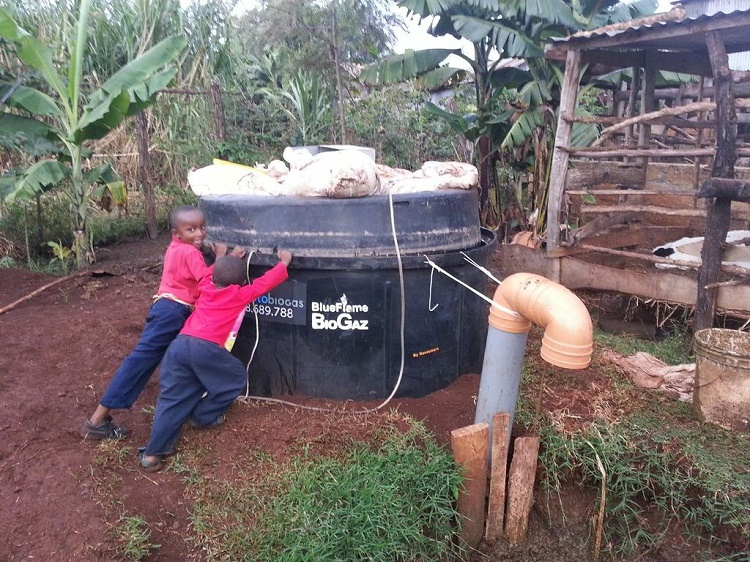 Use of biogas systems