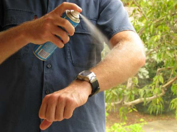 Use Insect repellants and creams