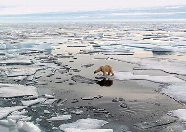 Why Is 2016 proving to be the Year of Atmospheric Record in Temperature?