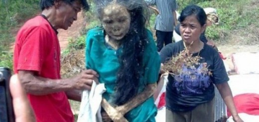 Believe It or not! Meet the bizarre walking corpses of troaja In Indonesia