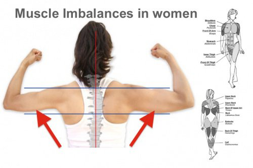 Over 90 % of Womens are suffering from muscle imbalances