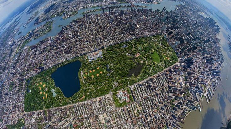 The Central Park in New York, USA