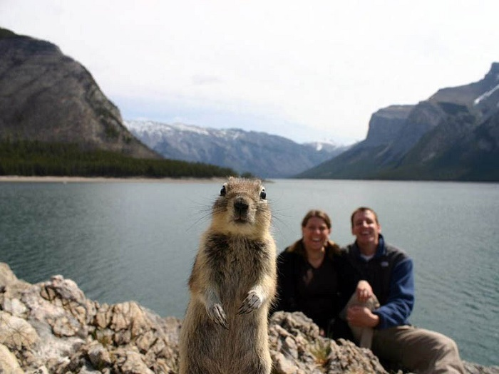 Cutest Photobomb Ever