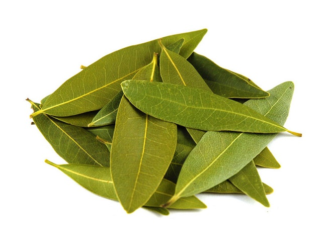 Basic Information about bay leaves