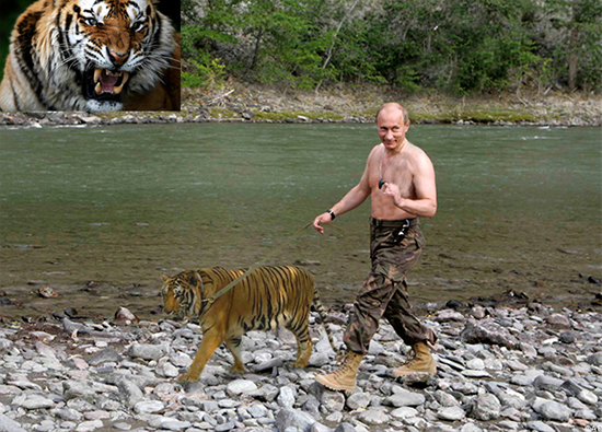 Putin with the tiger