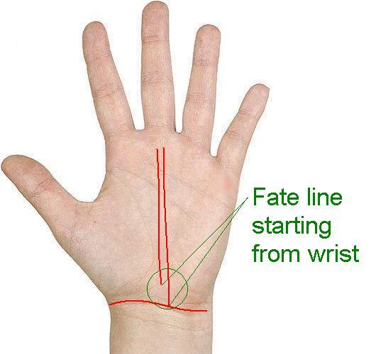 fate line starts from the wrist