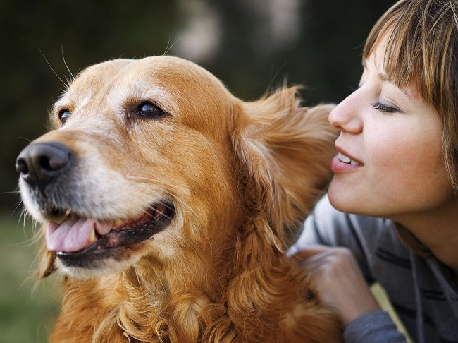 Dogs smell disease