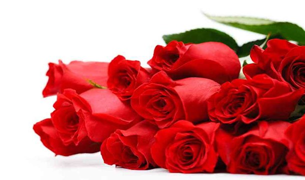 Men end up buying more roses then their female counterparts