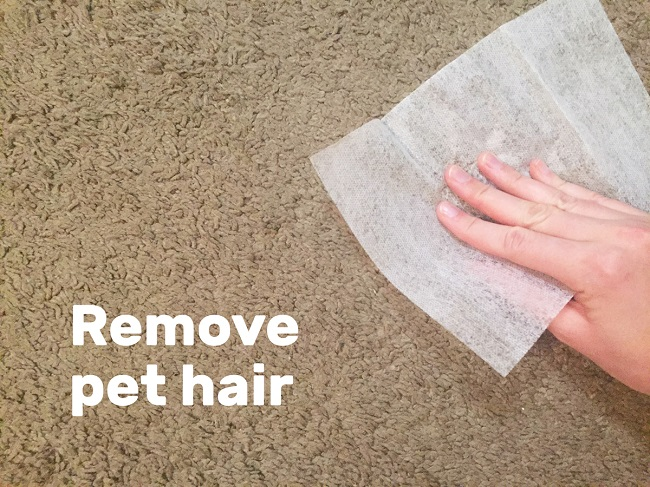 Remove pet hair from clothes and carpets using dryer sheets