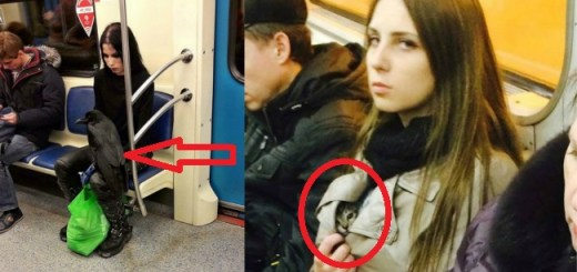10 Of the Most Bizarre and Weirdest People Spotted travelling On Subways