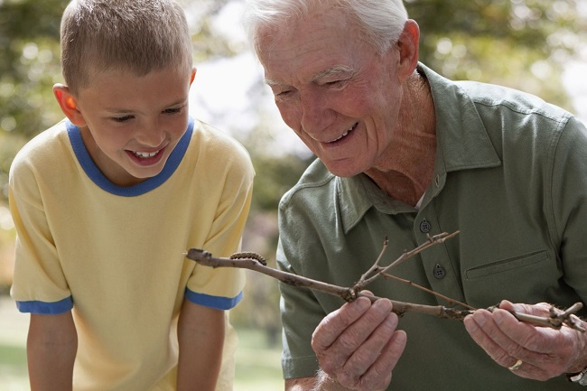 Grandfather showing Catepillar to grandson