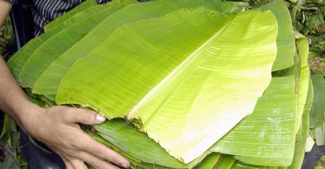 Banana leaves are Affordable too