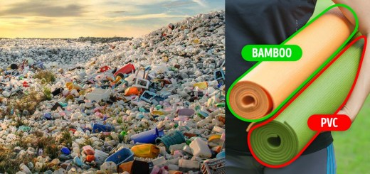 15 Things One Can Replace In Order To Keep The World From Drowning In Plastic