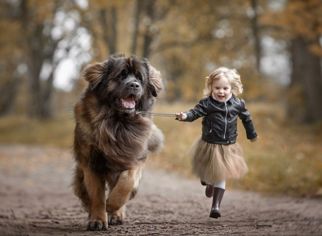 Girl playing with pet dog