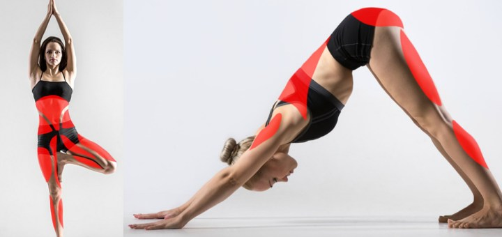 15 Yoga Poses to Change Your Body's Outlook Completely