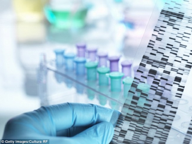 The evidence was collected from genetic barcodes