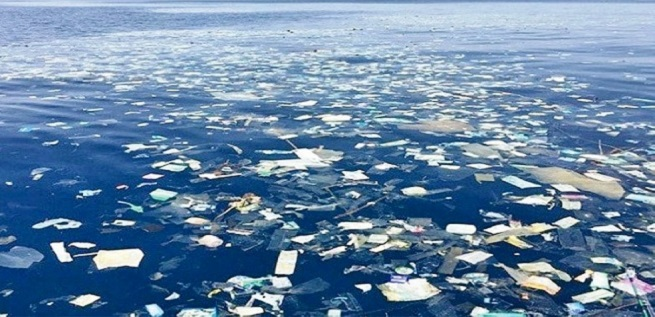 Eastern Garbage Patch