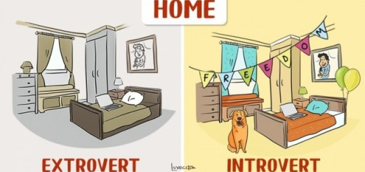 12 Illustrations That Show the funny side of how Introverts and Extroverts See the World