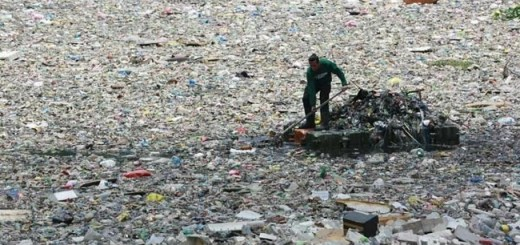 'Plastic-Eating' Bacteria Found In Philippines Might Be The Solution We Need To Save Earth