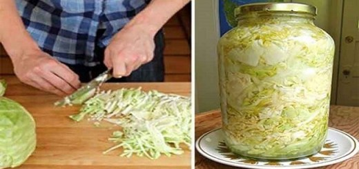 Sauerkraut: A Natural Secret Remedy to Prevent Cancer and Heart Disease