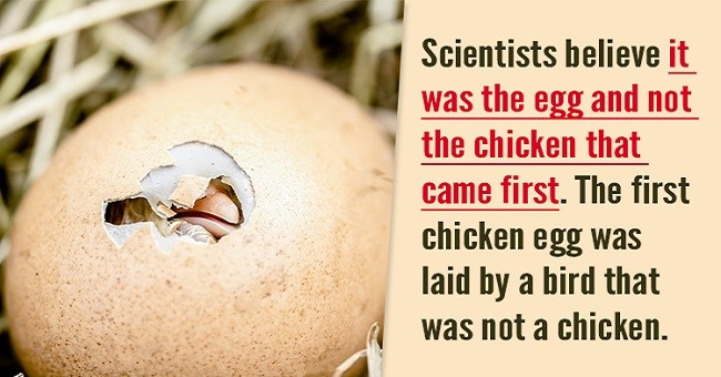 10 Mind Blowing Science Facts You And Your Friends Didn't Know About