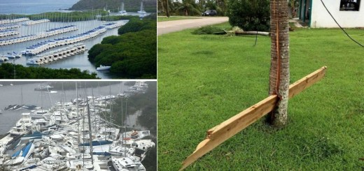 23 Scary and Amazing Photos of Natural Disasters Revealing How We Do Not Run the World