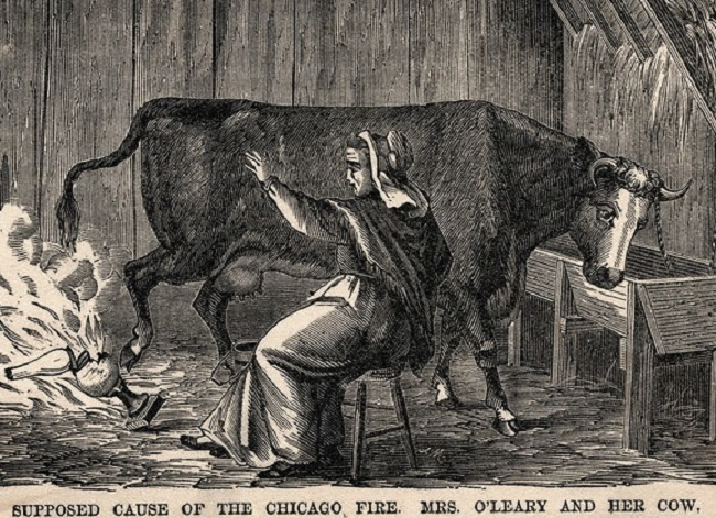 The great Chicago Fire was not started by a cow