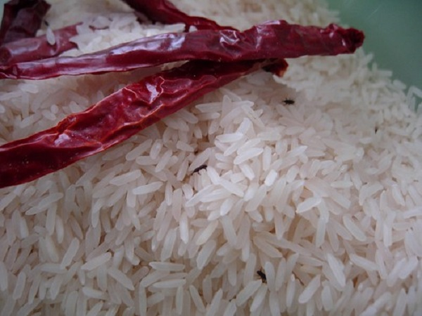Store rice with no insects